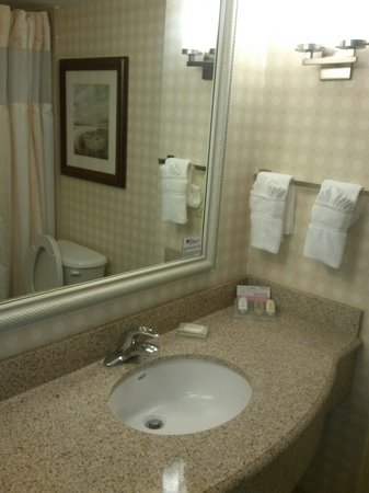 Hilton Garden Inn Savannah Midtown: Bathroom