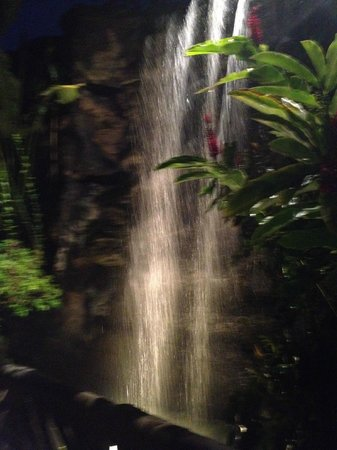 Polynesian Cultural Center: Waterfall on Property