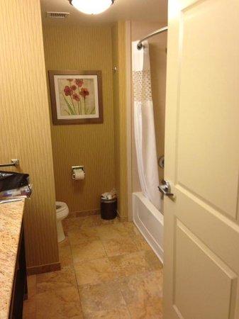 Hampton Inn Marquette/Waterfront: Bathroom