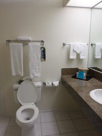 Miracle Springs Resort and Spa : Small Bathrooms