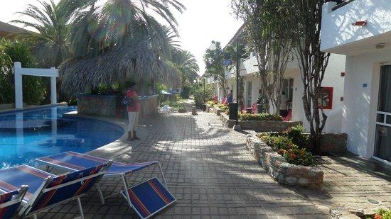 LD Palm Beach : Pileta y Bar