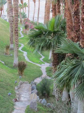 The Inn at Death Valley: paths among the palms
