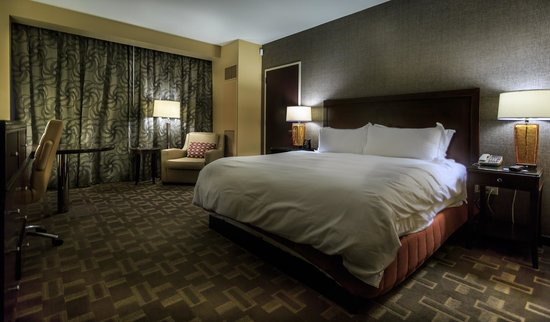 Hilton Americas - Houston: King Guest Room