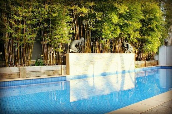 CocknBull Boutique Hotel: 11m Pool