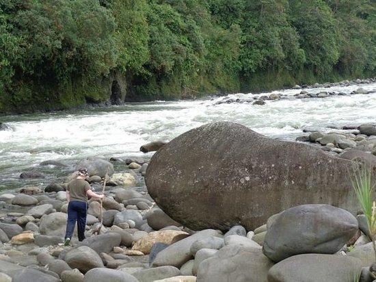 Rio Quijos Eco Lodge : Quijos River
