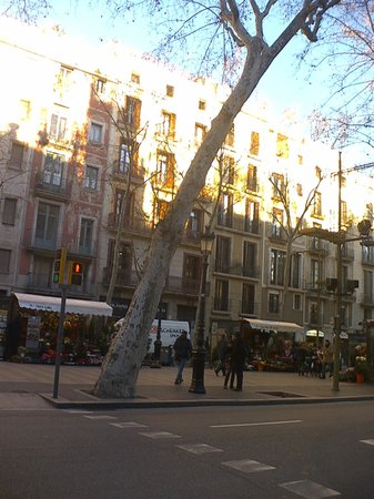 Apart-Ramblas108: from the outside