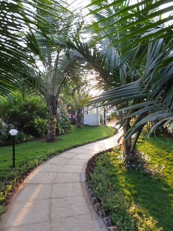 Santana Beach Resort : Beautiful garden