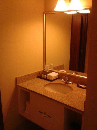 Sheraton Denver West Hotel: Lavamanos