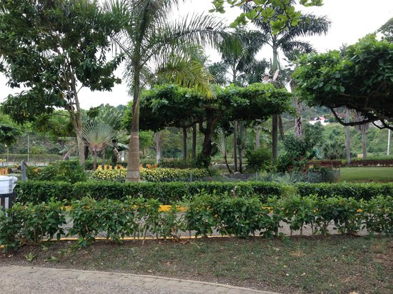 Turtle River Park Gardens