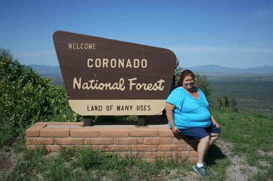 Coronado National Memorial : From montezumas pass