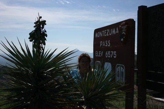 Coronado National Memorial : Montezumas pas elevation