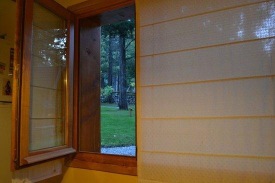 Bosque Dormido Cabañas & Spa : Vista desde la cocina