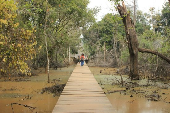 Neak Pean: The walkway - only a small section near the end is dirty