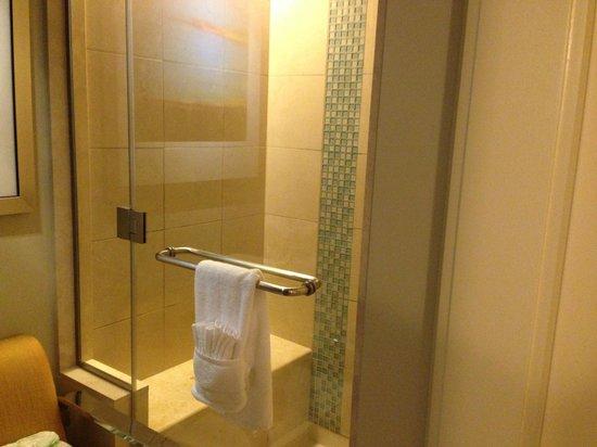 Bay Lake Tower at Disney's Contemporary Resort : Shower in Master bathroom 2 bedroom