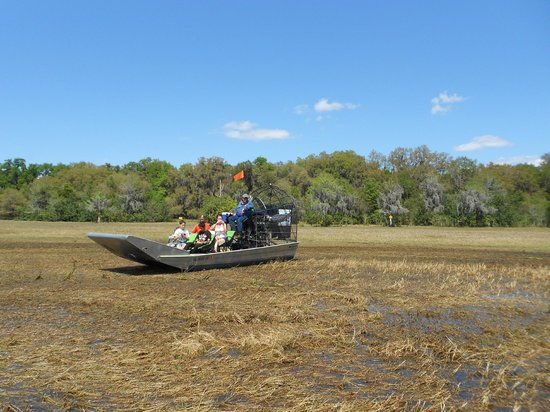 Wild Willy's Airboat Tours: It was our first time in the airboat; its really neat to go on land and water and through the ru