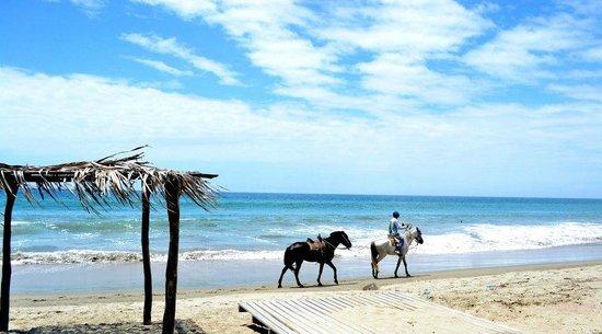 Puerto Palos: Increible playa. A descansar!!