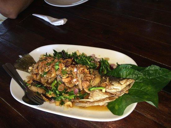 Kin Dee Restaurant: Signature Fish dish
