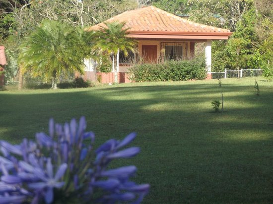 Toucan Rescue Ranch: Bed and Breakfast cottage