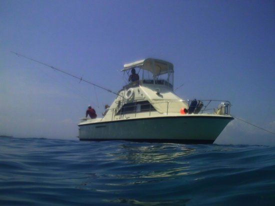 Sea Dreams Charter