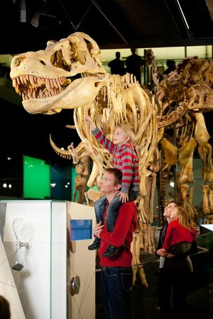Melbourne Museum: Visitors enjoying the Dinosaur Walk exhibition.