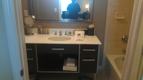 Residence Inn Fort Lauderdale Intracoastal/Il Lugano: Bathroom