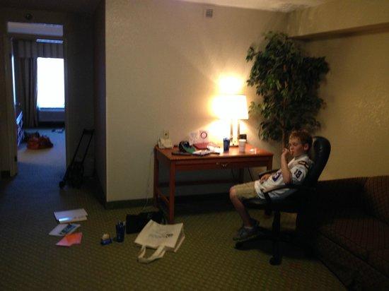 Comfort Suites University: Living room area