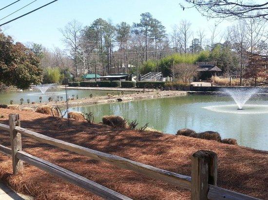 Birmingham Zoo: Beautiful landscape