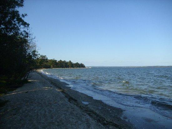 Raymond Island beach