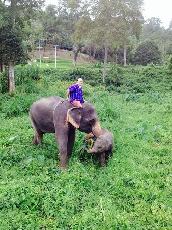 Patara Elephant Farm - Private Tours : Momma and baby
