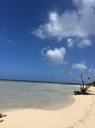 L'Escapade Island Resort : the island