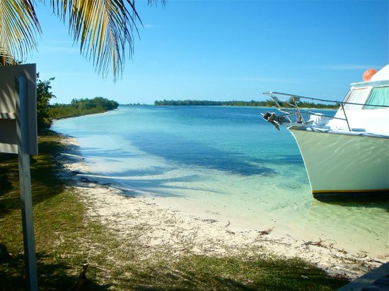 Sirena Beach : Playa
