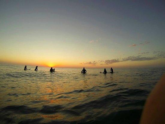 Dolphins Beach House: Sunshine Beach sunrise surf session