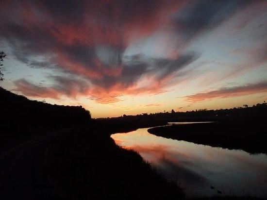 Hyatt Regency Newport Beach: Sunset by the Ecological Reserve