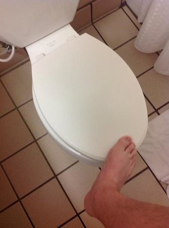 Holiday Inn Express Hotel & Suites Fort Worth (I-20): toilet seat loose