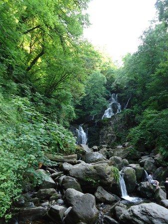 Torc Mountain Walk: Killarney