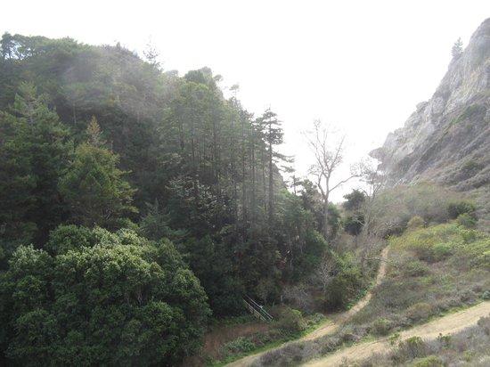 Partington Cove : Trail to cove