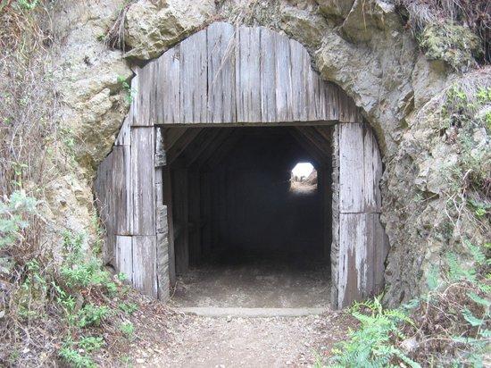 Partington Cove : Tunnel