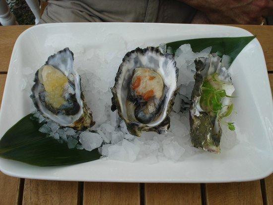 Duke of Marlborough : oyster trio