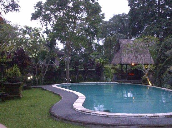 Bucu View Bungalows : Sangat tenang dan sepi berenang di siang hari saj biar tidak kedinginan