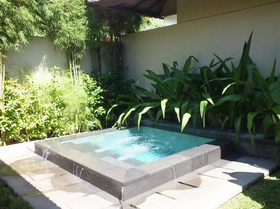 Uma Sapna: Private Plunge Pool