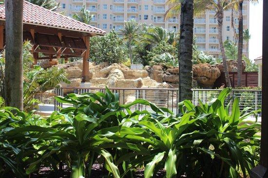 Marriott's Aruba Surf Club: View of Pool area