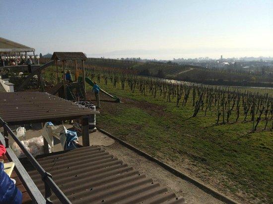 Max & Moritz: Blick von der Terrasse zum Bodensee