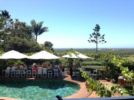 Fig Tree Restaurant: The view from my tabe