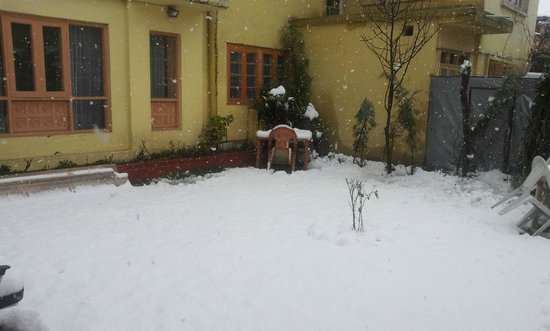 Hotel JH Bazaz (Happy Cottage): Happy cottage Snowfall in garden lawn 11th March 2014
