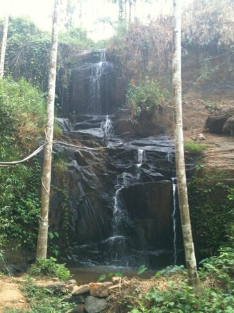Rippon Mount Resorts: Water falls inside the property