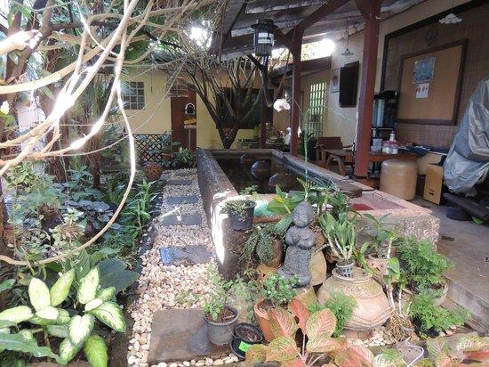 Cool Guesthouse : la cour intérieure trés zen