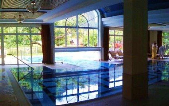 Gartenhotel Linde: La splendida piscina