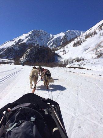 La Lauza : Sortie chiens de traîneau à Valloire