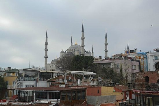 Saba Sultan Hotel: Die Aussicht von der Dachterrasse