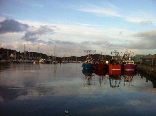 Anchor Hotel: Harbour evening